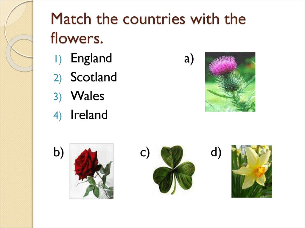 Match the countries with the flowers.