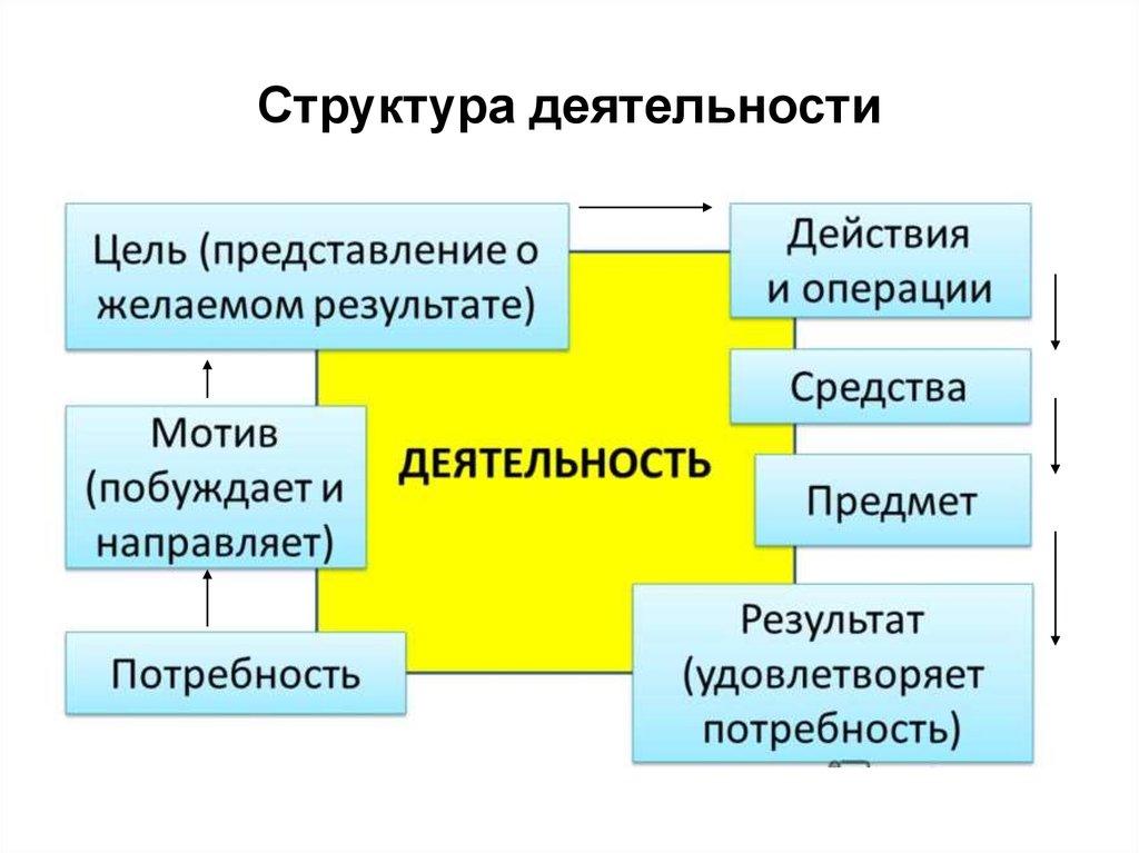 Картинки структура деятельности