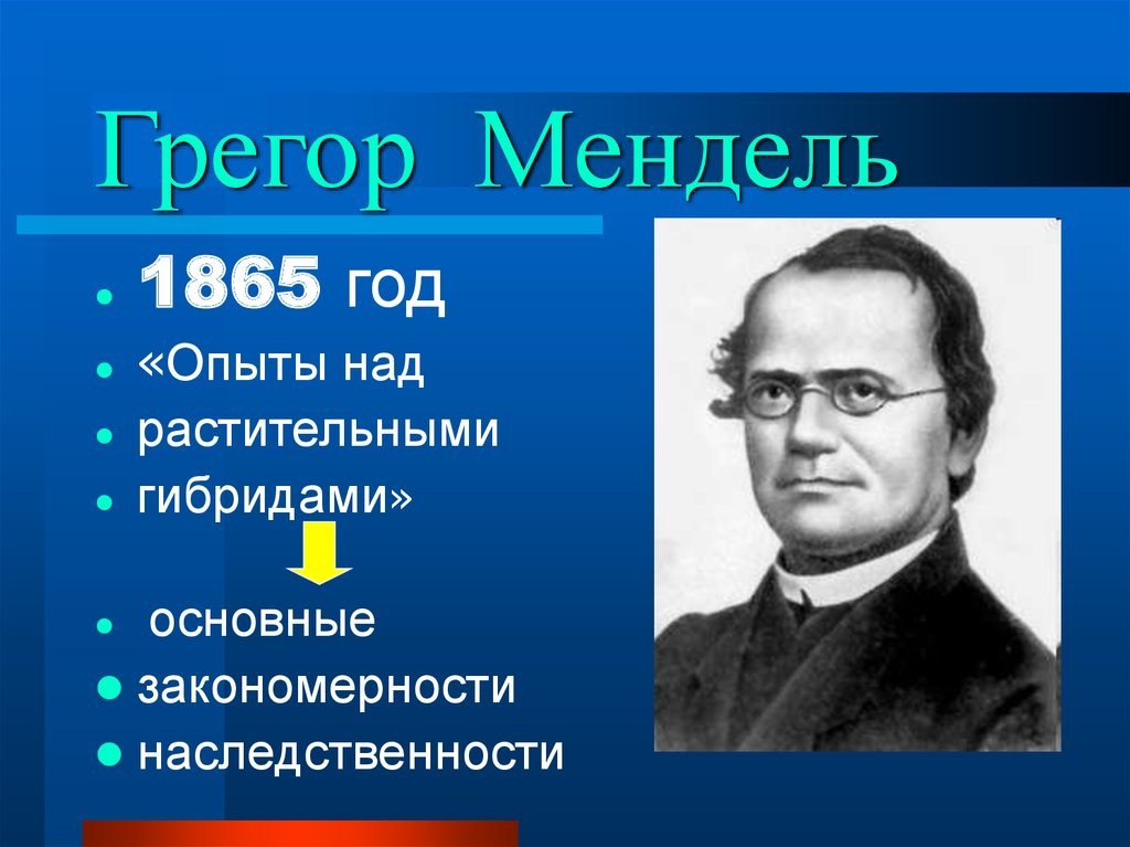 gregor mendel Plant and animal genes were gregor mendel's original focus, his ideas later made sense of our complex human workings, too, kicking off genetics.