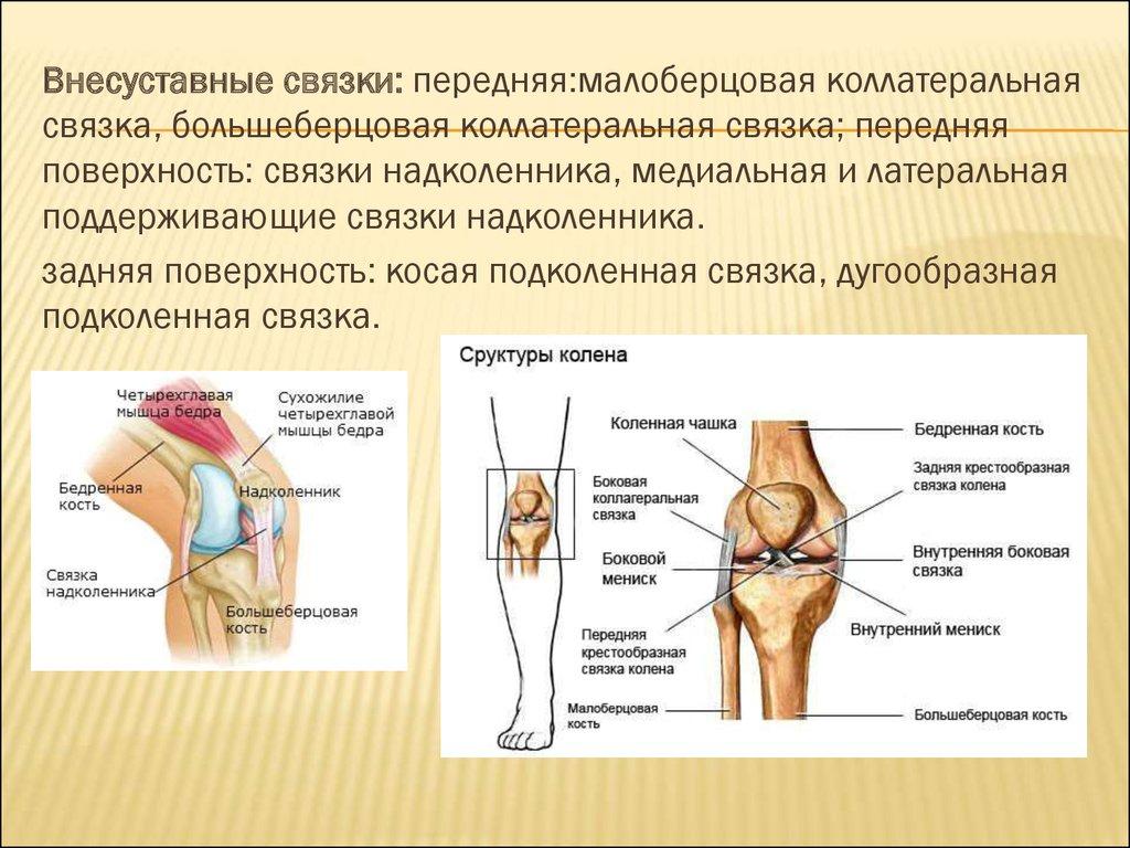 нагрузка после артроскопии коленных суставов