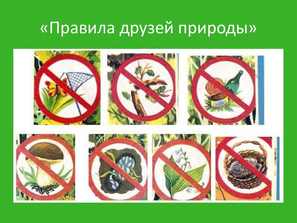 Картинки по охране природы