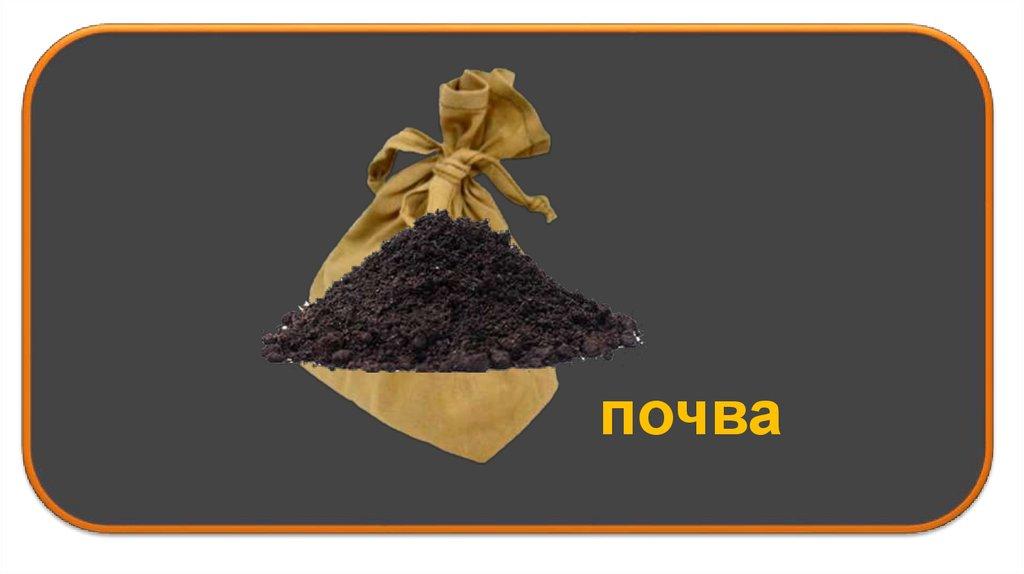 какое главное свойство почвы