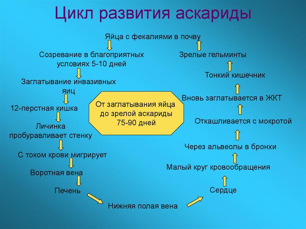 porno-zaglativanie-do-yaits-devushka-prokolotimi-soskami