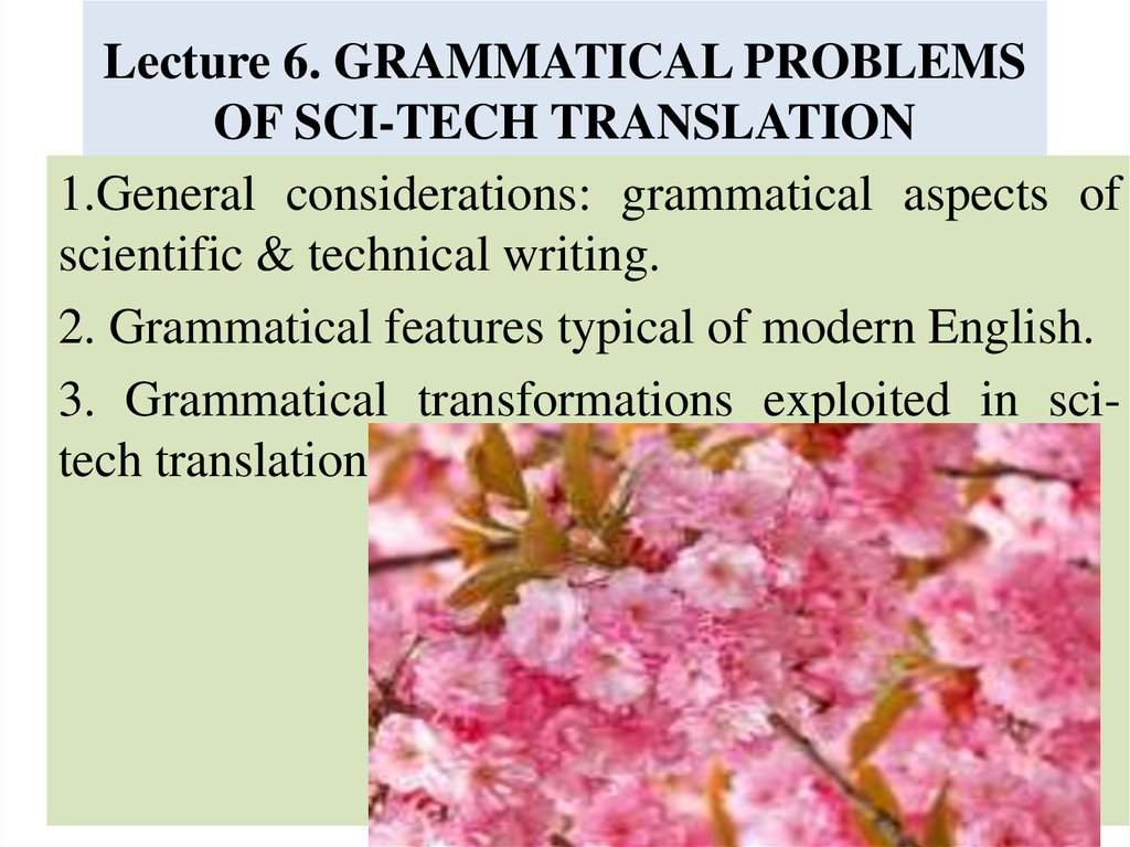Lecture 6. GRAMMATICAL PROBLEMS OF SCI-TECH TRANSLATION