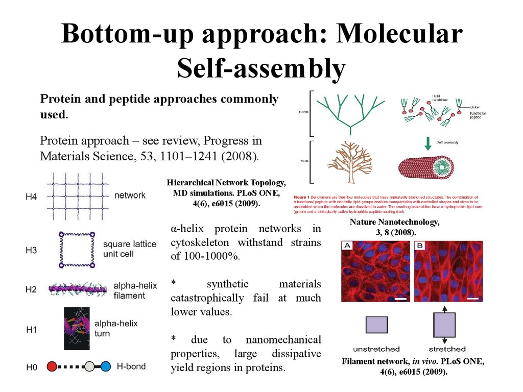 Bottom-up approach: Molecular Self-assembly