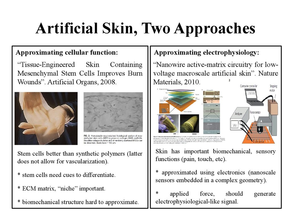 Artificial Skin, Two Approaches