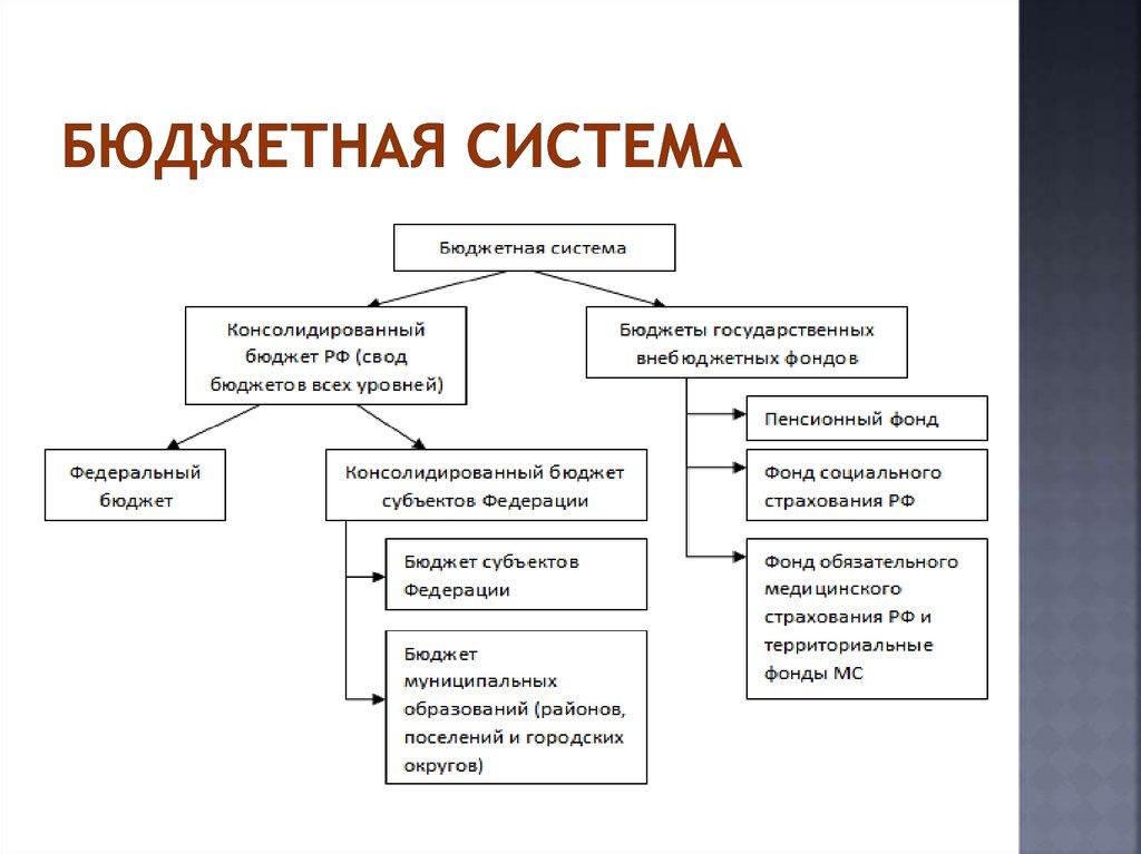 Бюджетная система рисунок