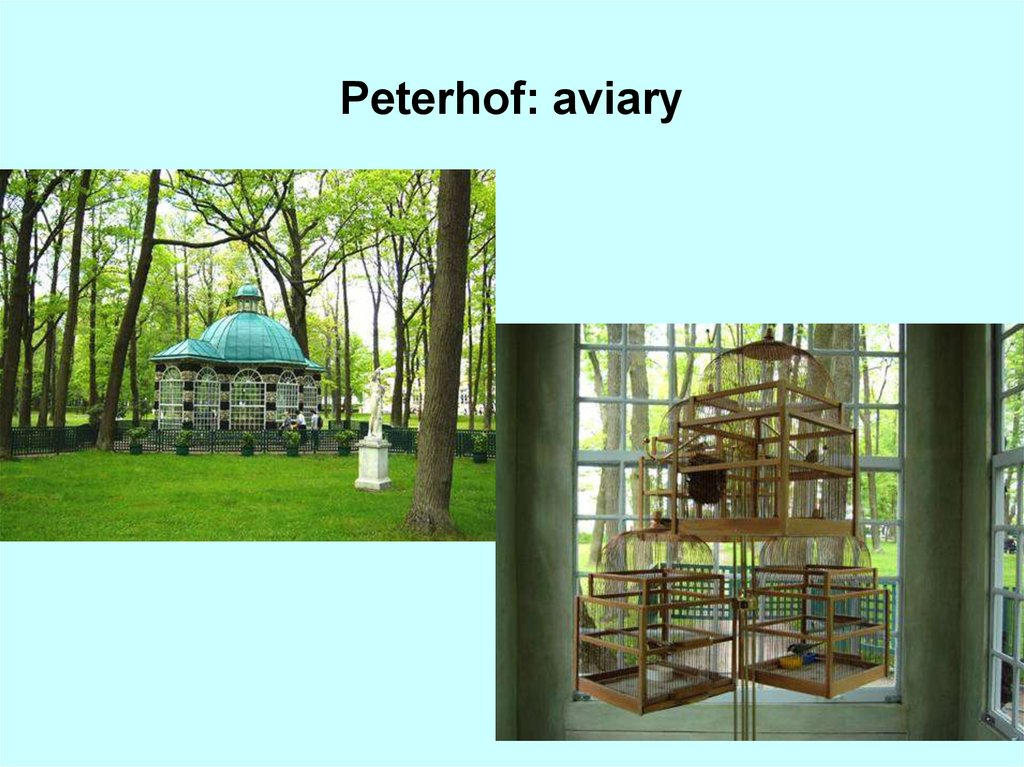 Peterhof: aviary