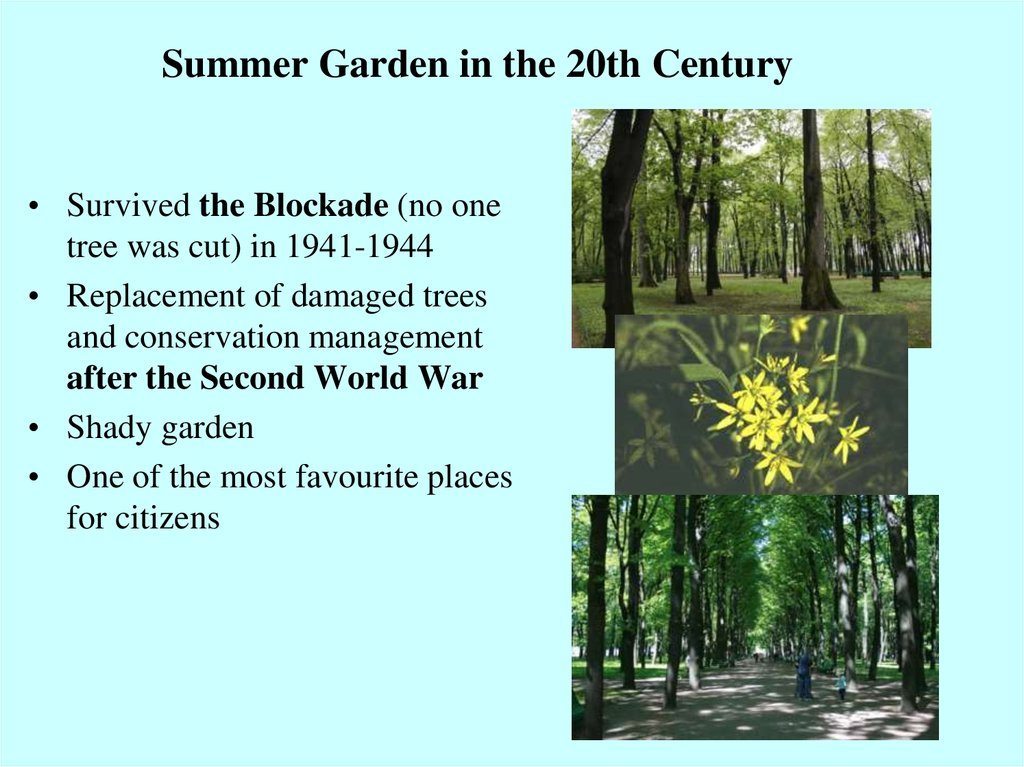 Summer Garden in the 20th Century