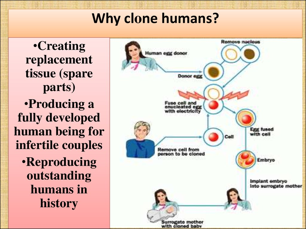 Why clone humans?