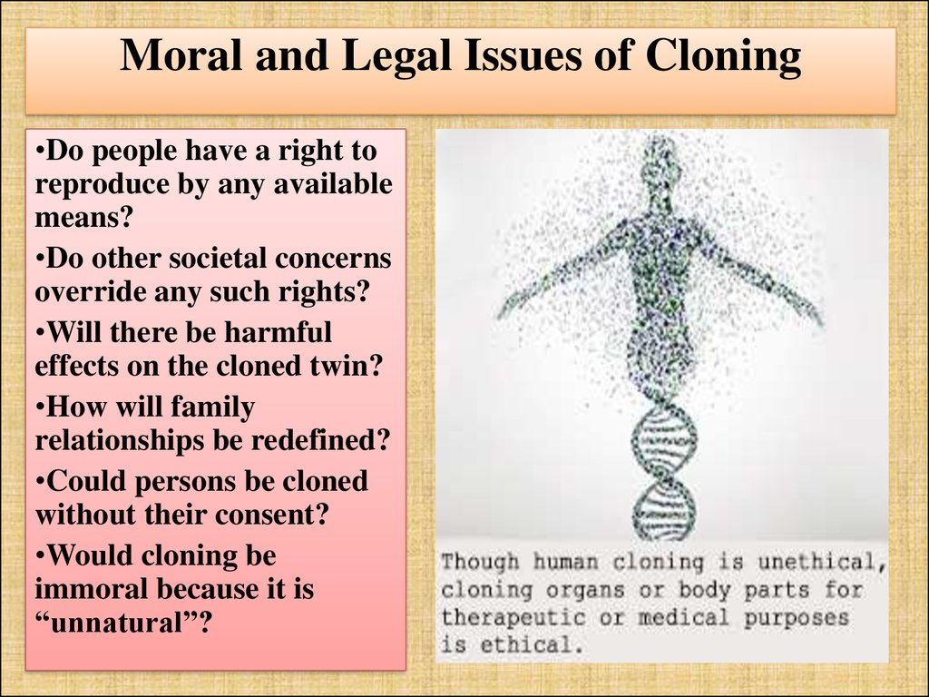Moral and Legal Issues of Cloning