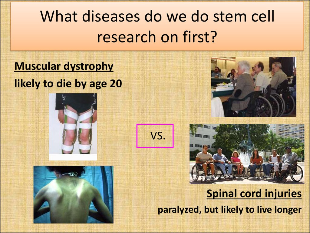 What diseases do we do stem cell research on first?
