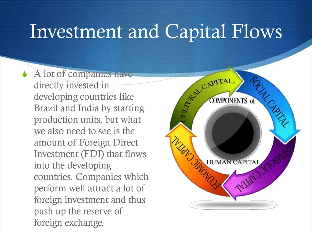 Investment and Capital Flows