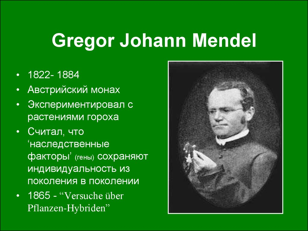the life and early times of johann mendel Biography gregor johann mendel was born on july 20th, 1822 in the austrian empire, now the czech republic he was an augustinian friar of the catholic church and a scientist.
