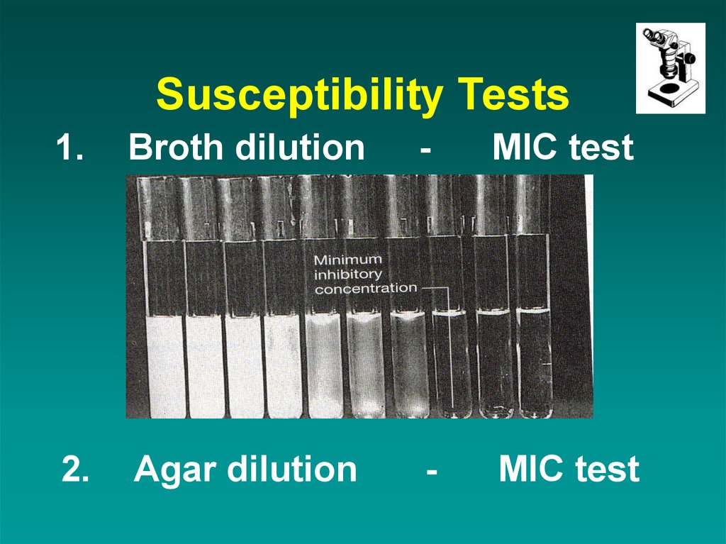 Susceptibility Tests