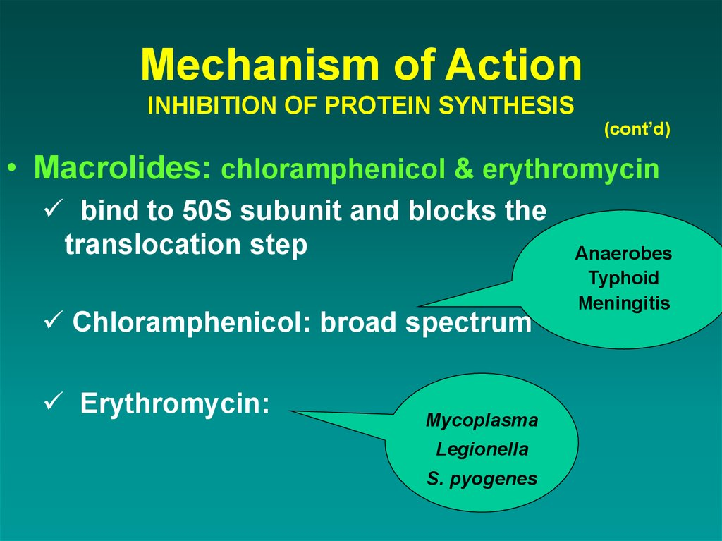 Mechanism of Action INHIBITION OF PROTEIN SYNTHESIS
