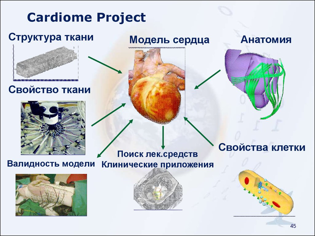 Cardiome Project