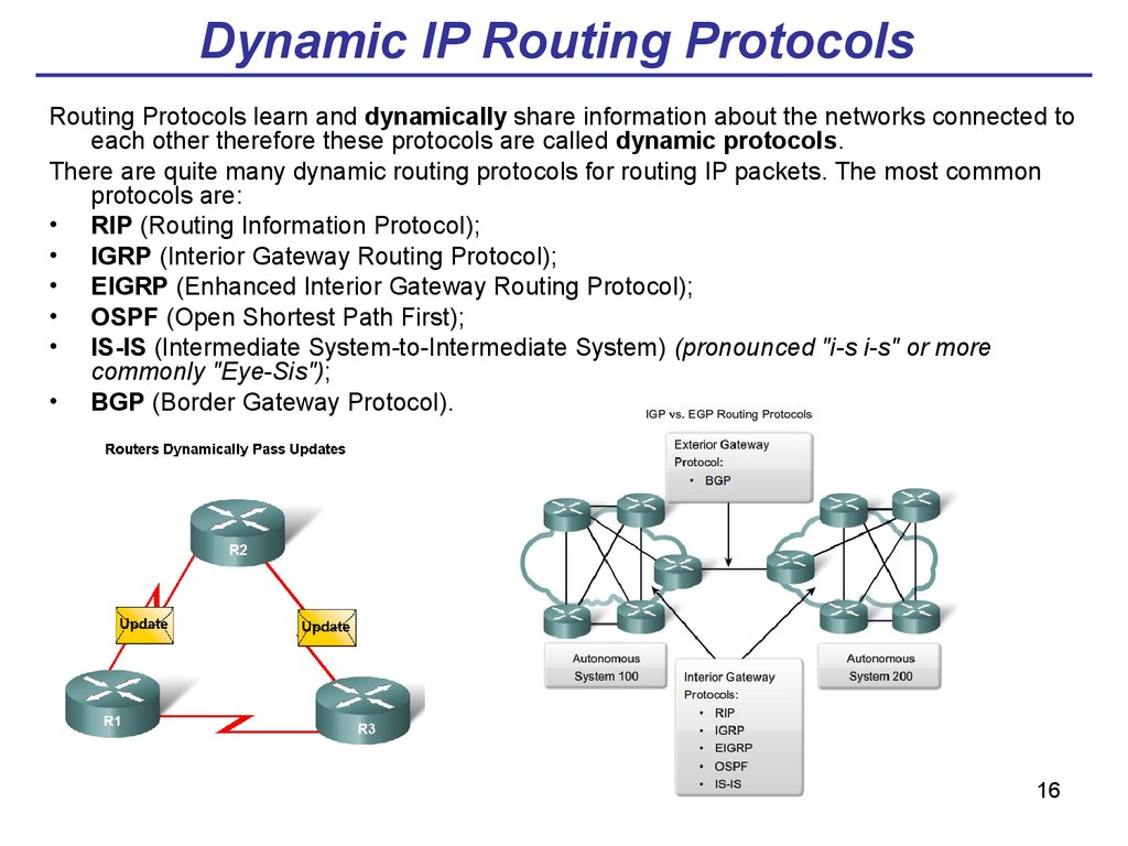 Dynamic IP Routing Protocols