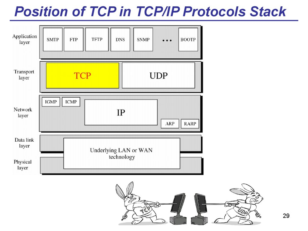 Position of TCP in TCP/IP Protocols Stack