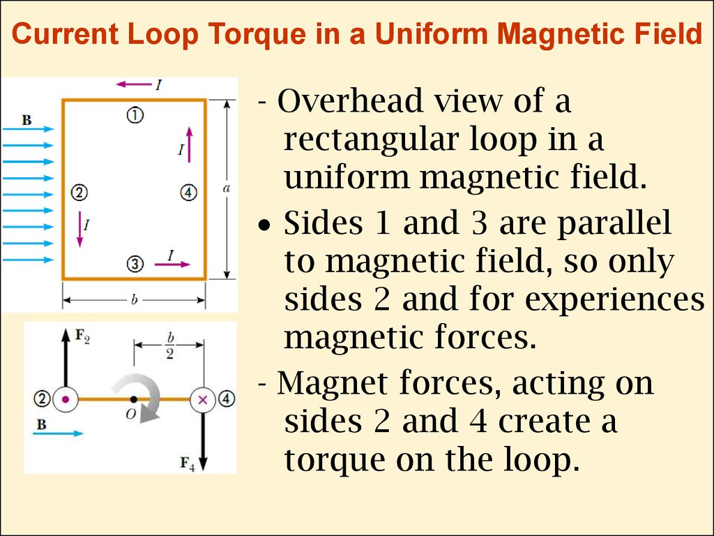 Current Loop Torque in a Uniform Magnetic Field