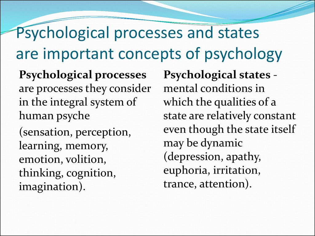 Psychological processes and states are important concepts of psychology