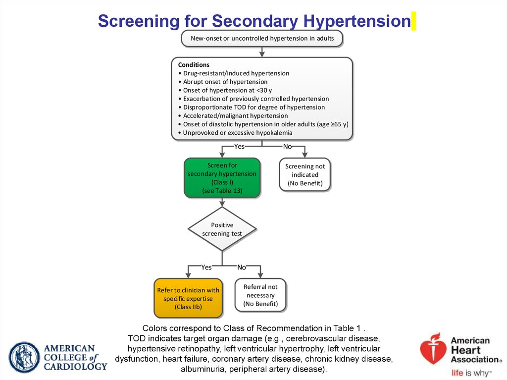 Screening for Secondary Hypertension