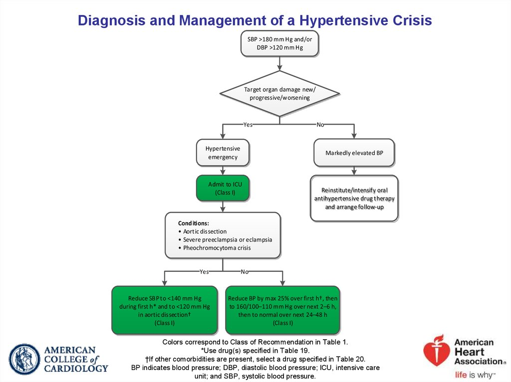 Diagnosis and Management of a Hypertensive Crisis