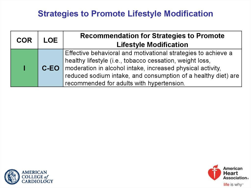 Strategies to Promote Lifestyle Modification