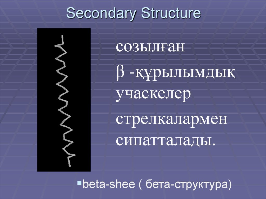 Secondary Structure
