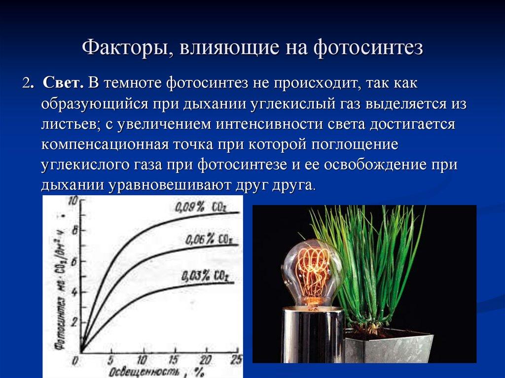 пышных зависимость фотосинтеза от внешних условий кратко слухам, авербух подарил