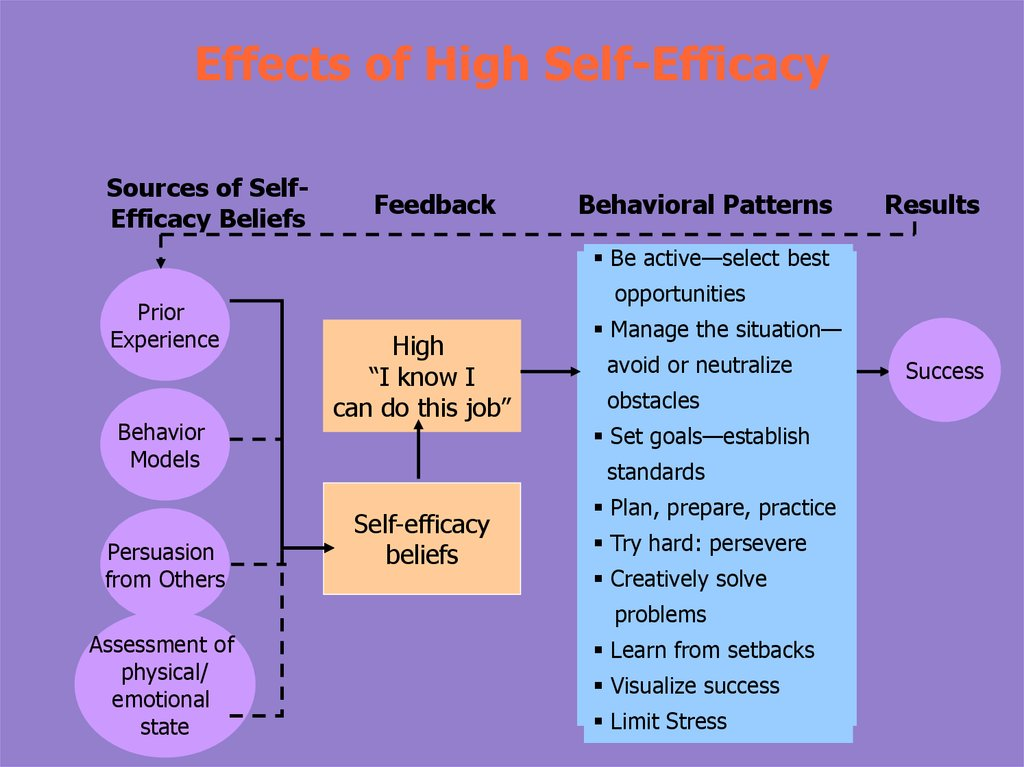 Effects of High Self-Efficacy