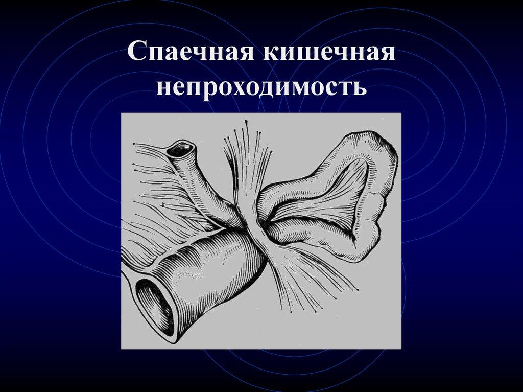 Handbook of Spectroscopy (2 Vol. Set)