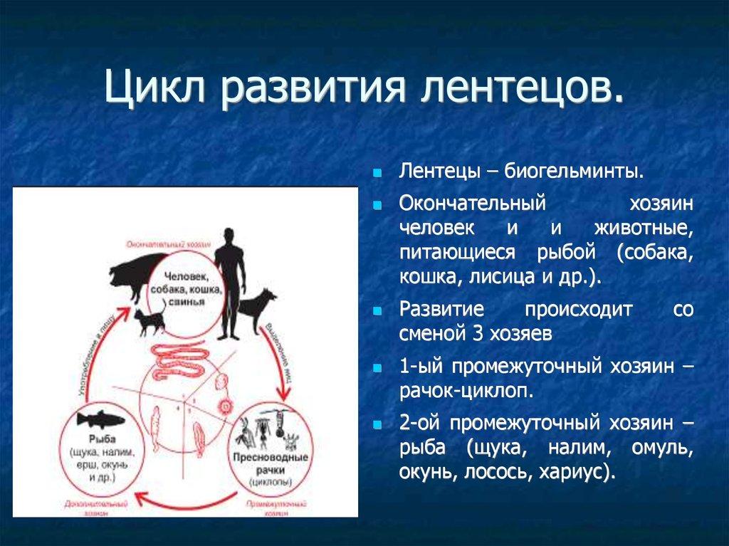 тканевые паразиты человека