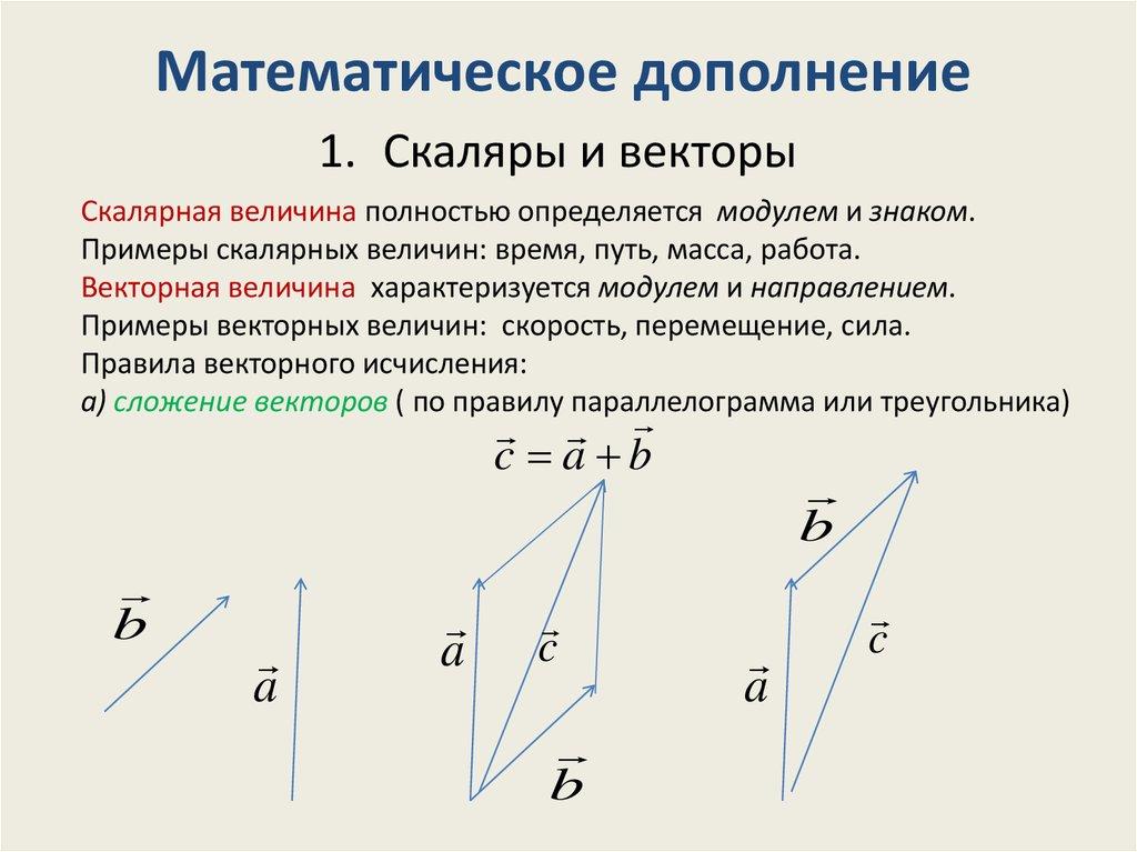Векторная и скалярная величина примеры решений задач контрольная по решению задач с помощью уравнений