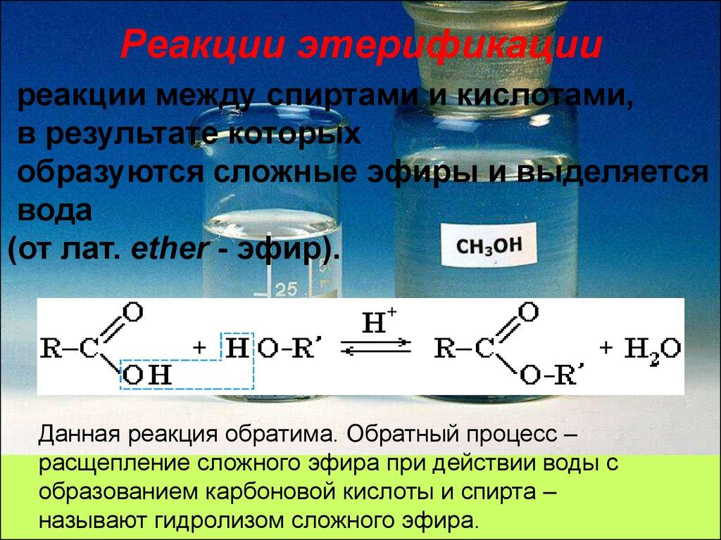 предложений сложные эфиры химические реакции работ материалов