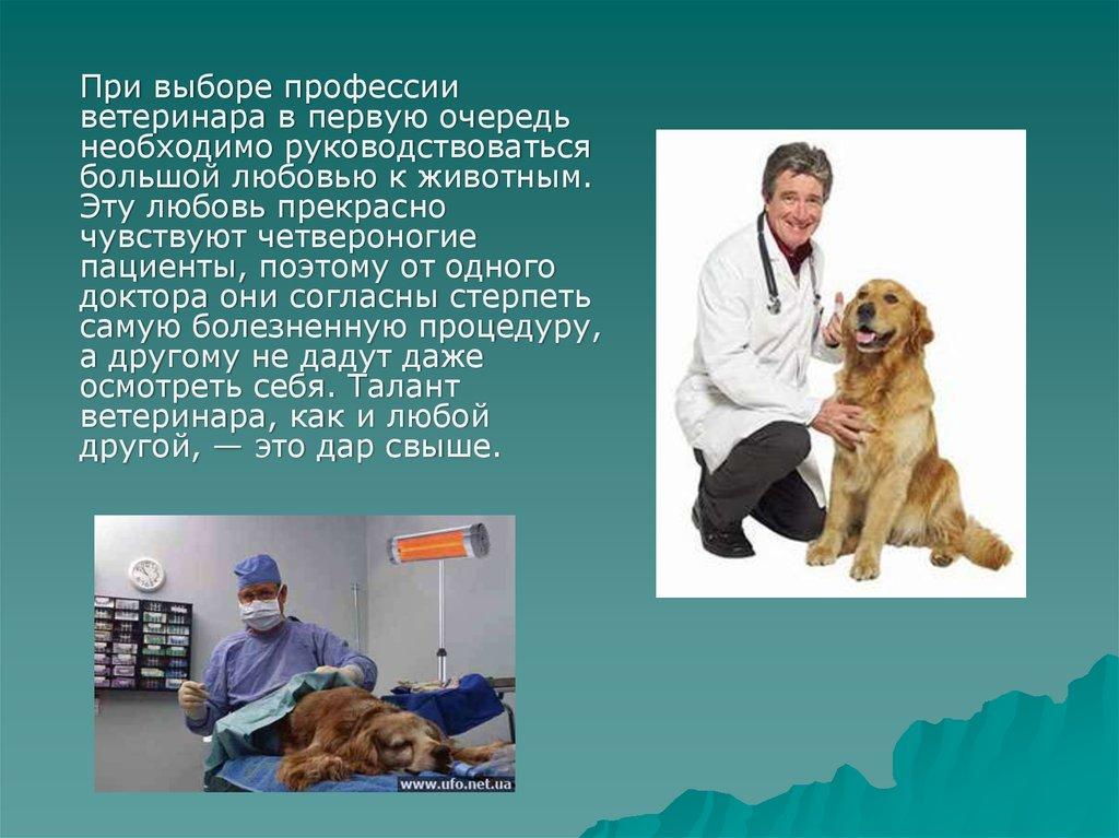 veterinar ppt)