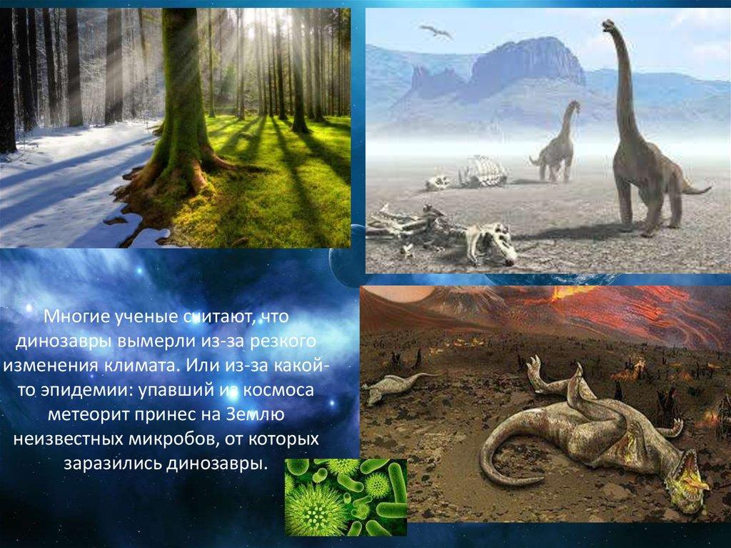 гибель динозавров в картинках с названиями сегодняшнего обзора