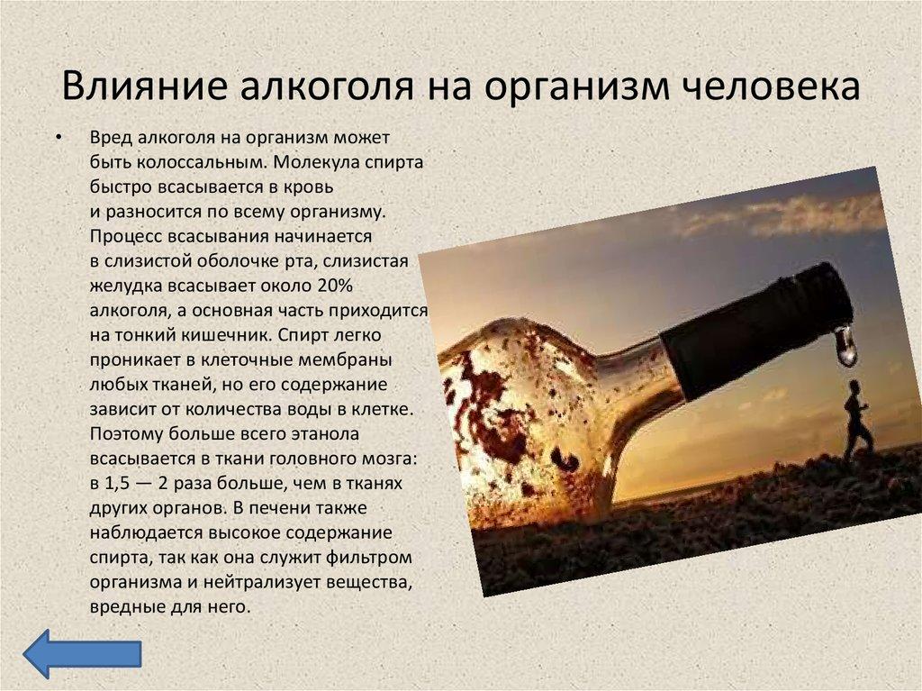 Влияние и вред алкоголя на человека