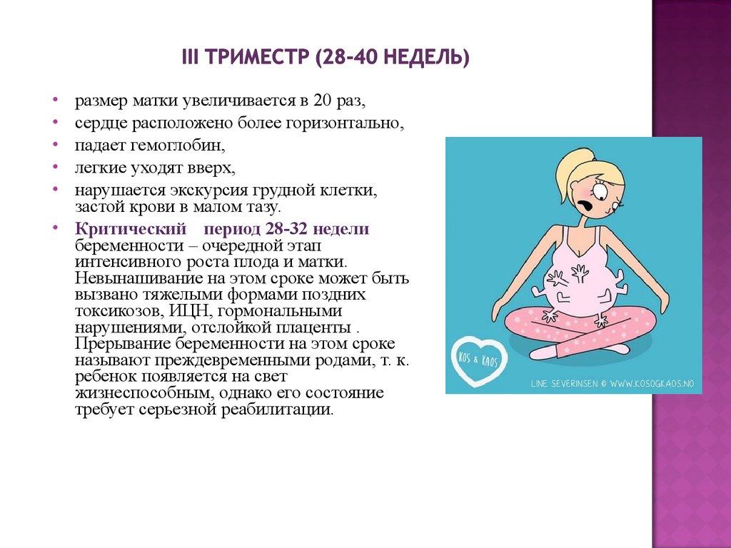 Диета беременной женщины триместр