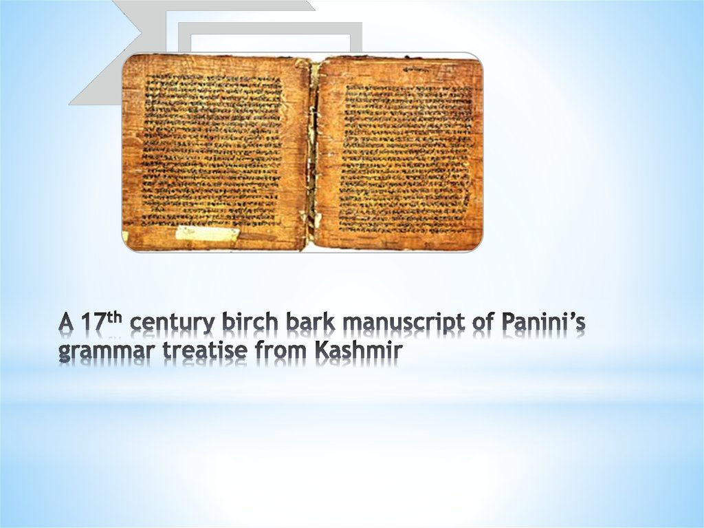 A 17th century birch bark manuscript of Panini's grammar treatise from Kashmir