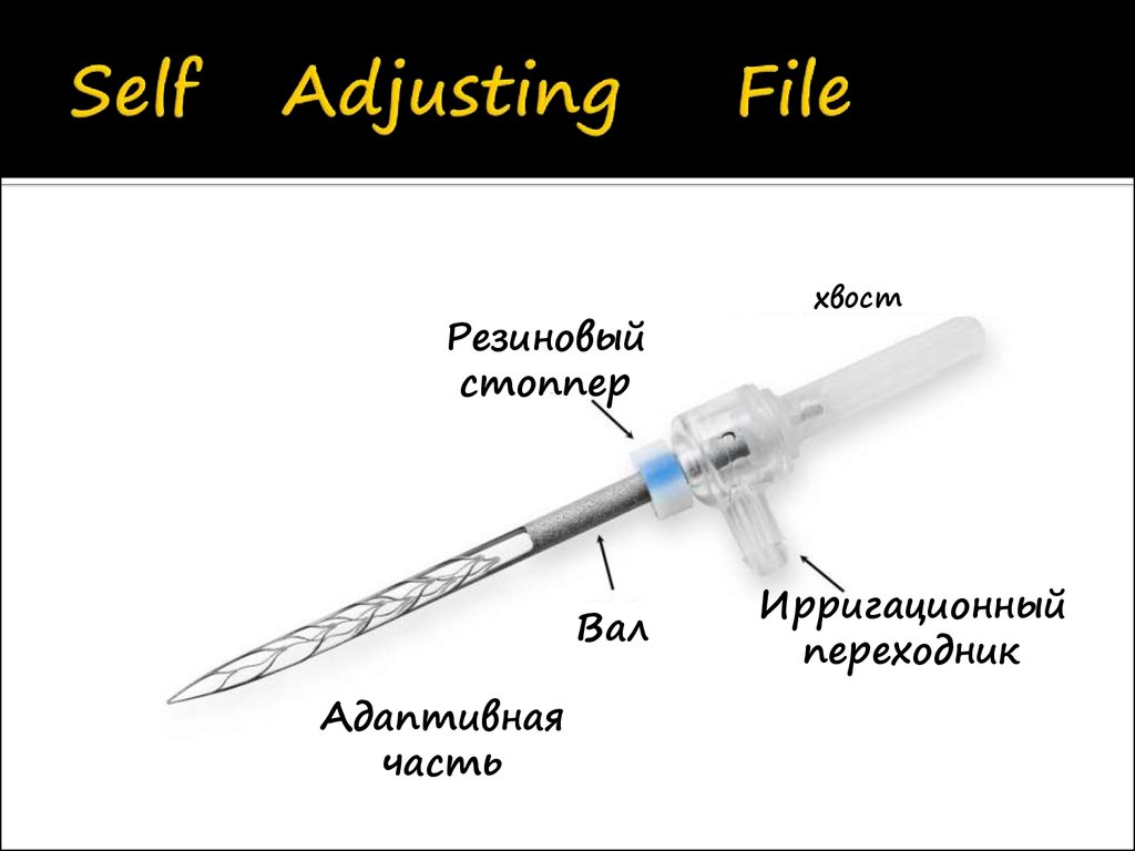Self Adjusting File