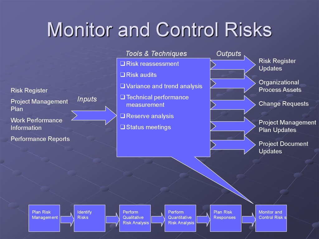 Monitor and Control Risks