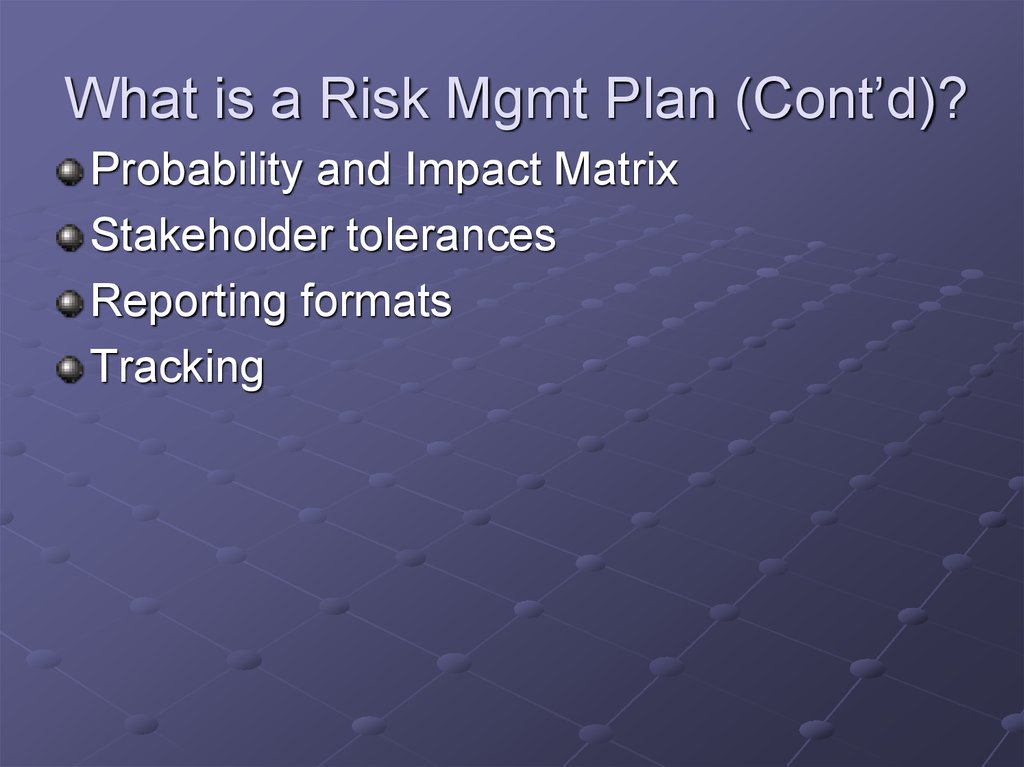What is a Risk Mgmt Plan (Cont'd)?