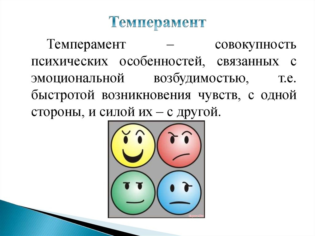 temperaments Want to know who you are melancholic, phlegmatic, choleric or sanguine free personality test here you will also learn who you are introvert or extrovert.