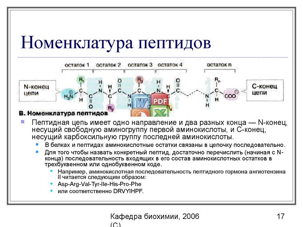Пептиды содержатся оксандролон внешний вид