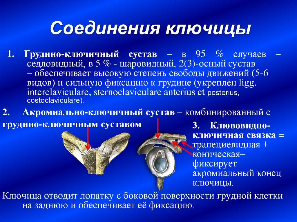 иссечение суставной сумки при бурсите новосибирск