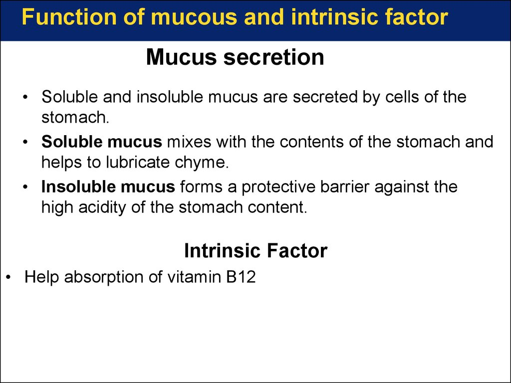 Mucus secretion