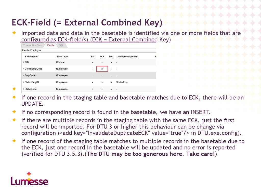 ECK-Field (= External Combined Key)