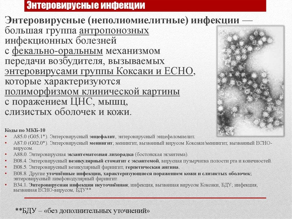 Хлорамин концентрация при энтеровирусной инфекции