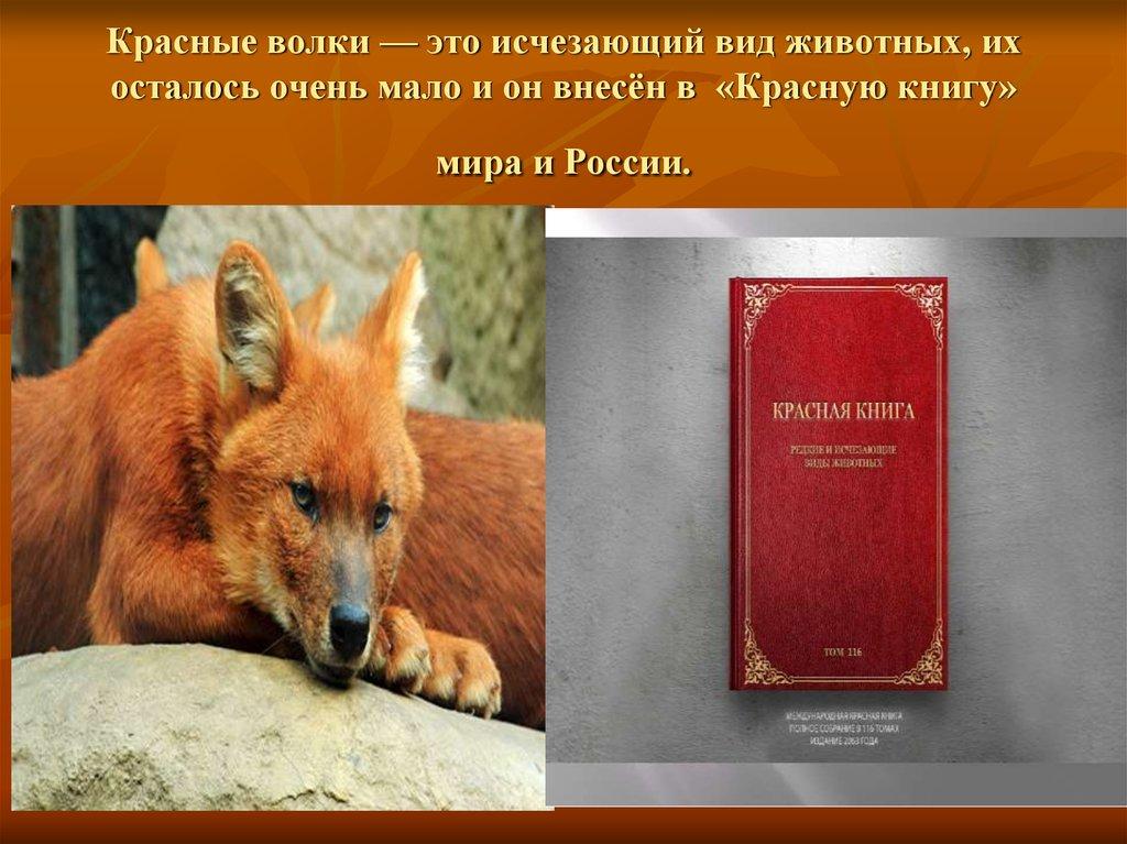 Картинки для сотовых животные занесены в красную книгу